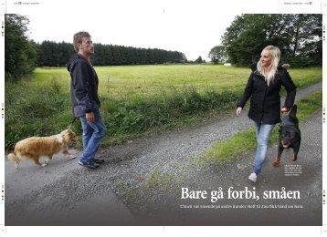 Aftenbladet_10_september_2010