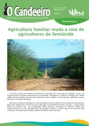 Agricultura familiar muda a rota de agricultores do Semi?rido