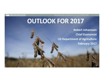 OUTLOOK FOR 2017