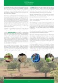 SUSTAINABLE FORESTRY - Page 6