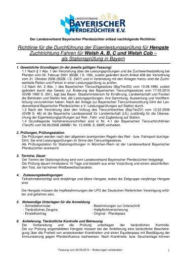 Richtlinie für die Durchführung der Eigenleistungsprüfung für ...