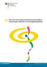 Lehr-Lern-Forschung und Neurowissenschaften - Erwartungen ...