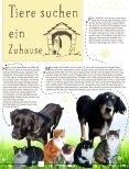 2017-03-MARKTBLÄDSCHE - Page 6