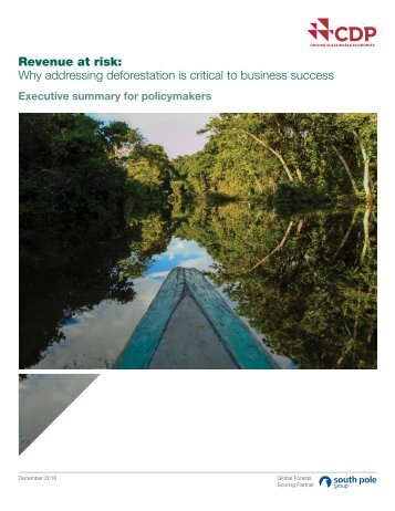 Revenue at risk Why addressing deforestation is critical to business success