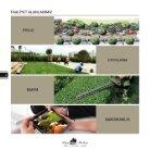 Peyzaj Planlama Dijital Katalog - Page 6
