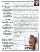 Napjaink Február 2017 - Page 3