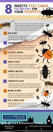 The 8 The Worst Pest Insects To Have In The UK