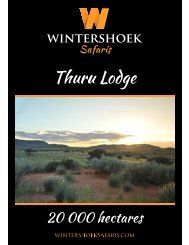 Thuru Lodge | Northern Cape | South Africa