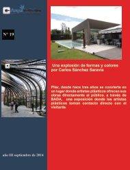 e-AN N° 19 nota N° 9 Una explosión de formas y colores por Carlos Sánchez Saravia
