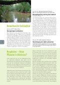 Umwelt - Hörbranz - Seite 6