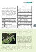 Umwelt - Hörbranz - Seite 7