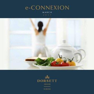DGS e-Connexion March 2017