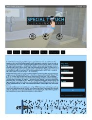 Special Touch Cleaning Pros PDF