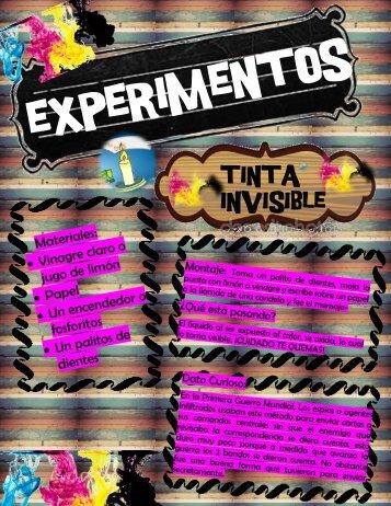 EXPERIMENTOS REVISTAS
