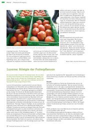 Luzerne: Königin der Futterpflanzen (1.045 KB - Naturland