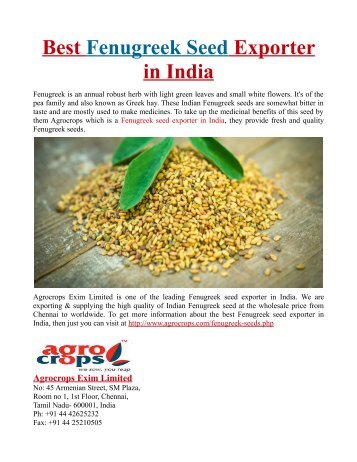Best Fenugreek Seed Exporter in India