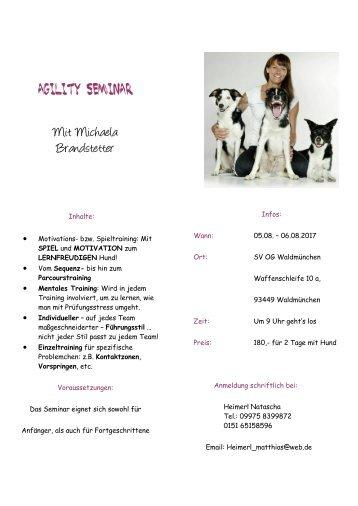 Agility-Seminar-Ausschreibung-A5