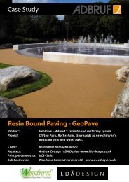 Case Study Resin Bound Paving - GeoPave - Ecobuild