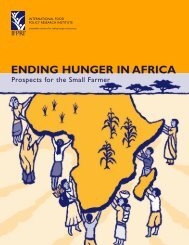 Ending Hunger in Africa - International Food Policy Research Institute