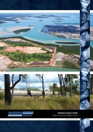 Bandanna Energy Limited Interim Financial Report 2010