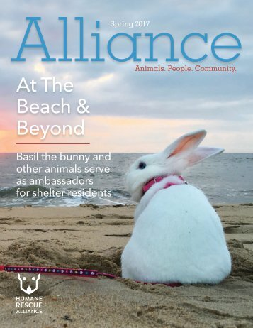Alliance Magazine Spring 2017