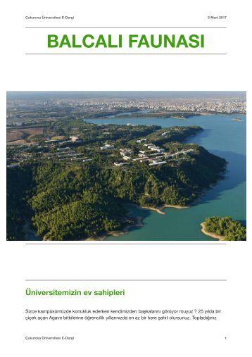 Çukurova Üniversitesi Dergisi