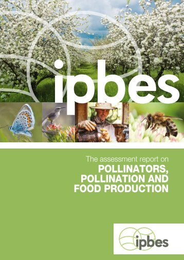 POLLINATORS POLLINATION AND FOOD PRODUCTION