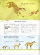 027 Was ist Was - Pferde - Seite 5