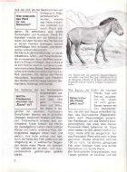 027 Was ist Was - Pferde - Seite 7