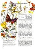 043 Was ist Was - Schmetterlinge - Seite 6