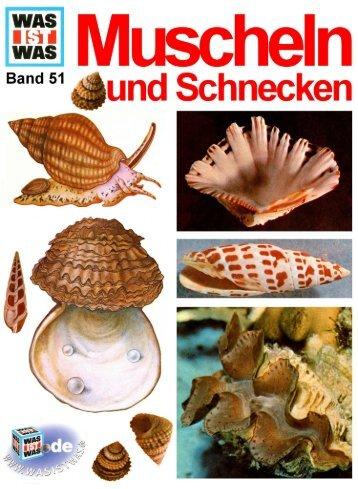 051 Was ist Was - Muscheln und Schnecken