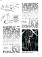 073 Was ist Was - Spinnen - Seite 7