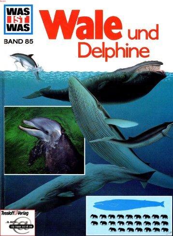 085 Was ist Was - Wale Und Delphine