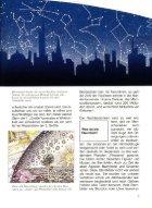 099 Was ist Was - Sternbilder und Sternzeichen - Seite 7