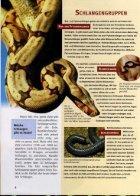 121 Was ist Was - Schlangen - Seite 7