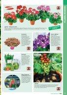 Gartenkatalog_2017 - Seite 5