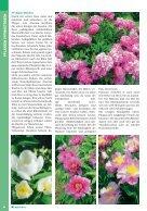 Gartenkatalog_2017 - Seite 6