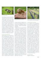 Albmagazin_Muensingen_2_2016 - Seite 5