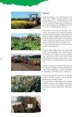 Erdbeer- und Himbeerpflanzen - Kraege.de - Seite 4