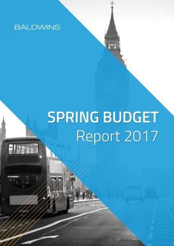 SPRING BUDGET Report 2017