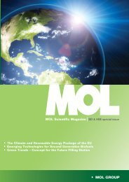 SD & HSE special issue - Mol