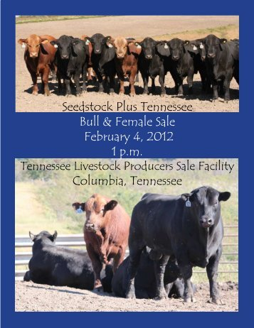 Seedstock Plus Tennessee Bull & Female Sale February 4, 2012 1 ...