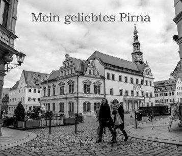 Buch Pirna Blätter-PDF