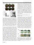 Heterologous expression of OsWRKY23 gene enhances pathogen ... - Page 6