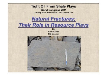 Hutch Jobe, SM Energy - Tight Oil From Shale Plays World ...