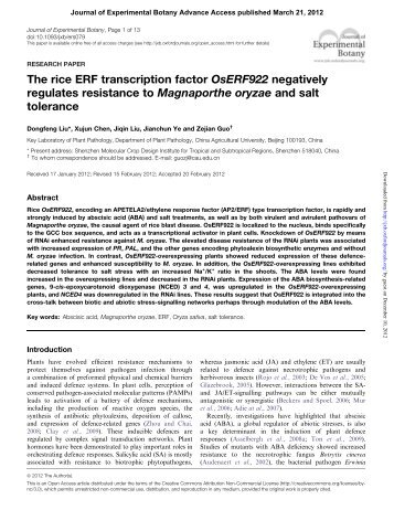 The rice ERF transcription factor OsERF922 negatively regulates ...