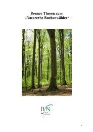 """Bonner Thesen zum """"Naturerbe Buchenwälder"""" - Bundesamt für ..."""