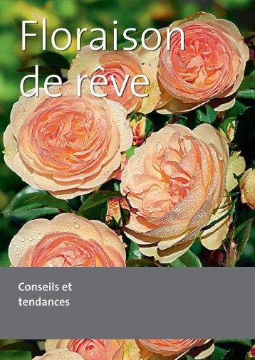 PDF Floraison de rêve