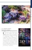 Antigua - Page 7