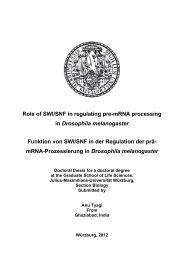 4.5 mRNA Processing - OPUS - Universität Würzburg